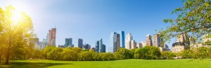 Therapist in NYC, Psychotherapist, MArriage and Family Therapists