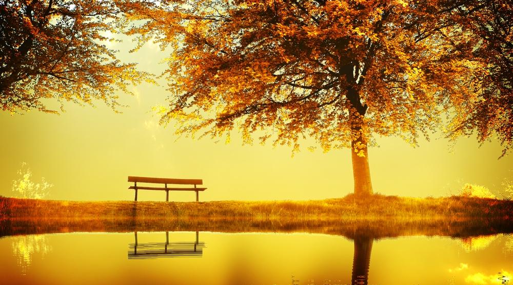 NYC Therapist, counselor, psychotherapist, meditation, mindfulness